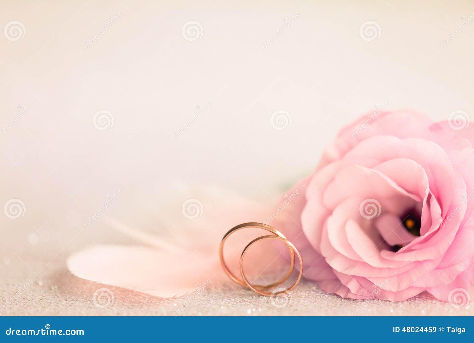 Ślubny tło z złocistymi pierścionkami, delikatnym kwiatem i światło szpilką,