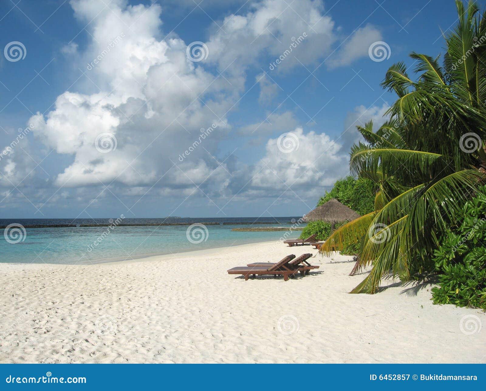 śnić na plaży