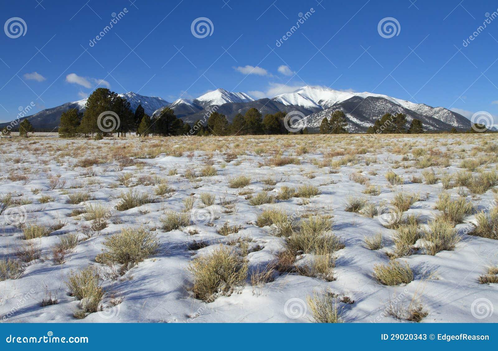Śnieżna łąka z Halnym tłem