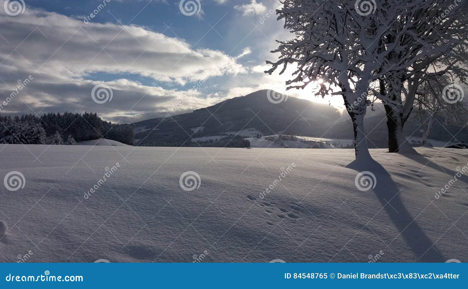 Śnieżny Austria