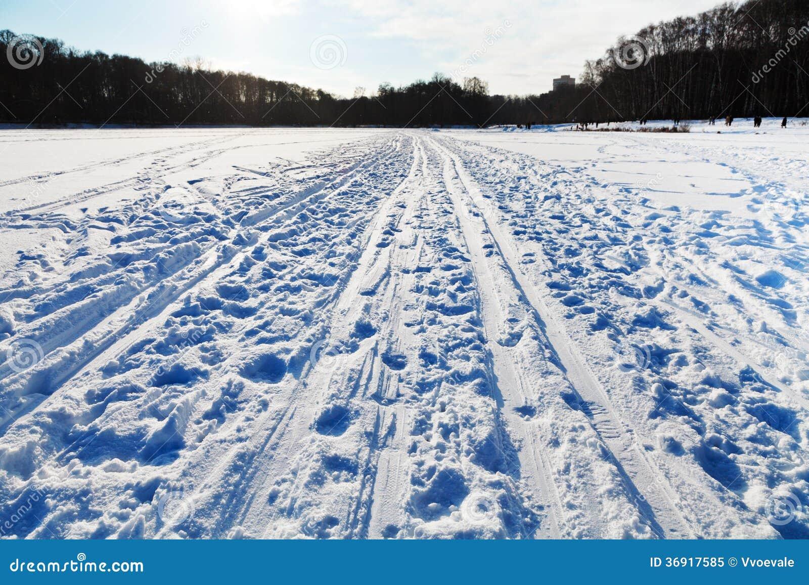 Śnieżny pole w zimnym zima dniu