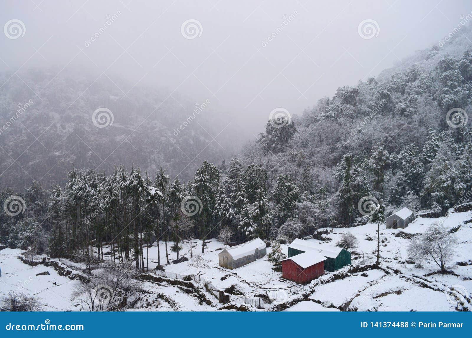 Śnieżny spadek, Mglista dolina, budy i drzewa, - zima w Indiańskiej wiosce w Uttarakhand w himalaje
