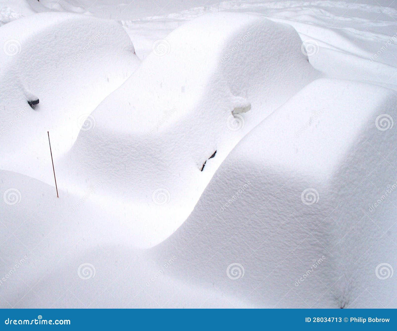 Śnieżycy Zakrywający samochody