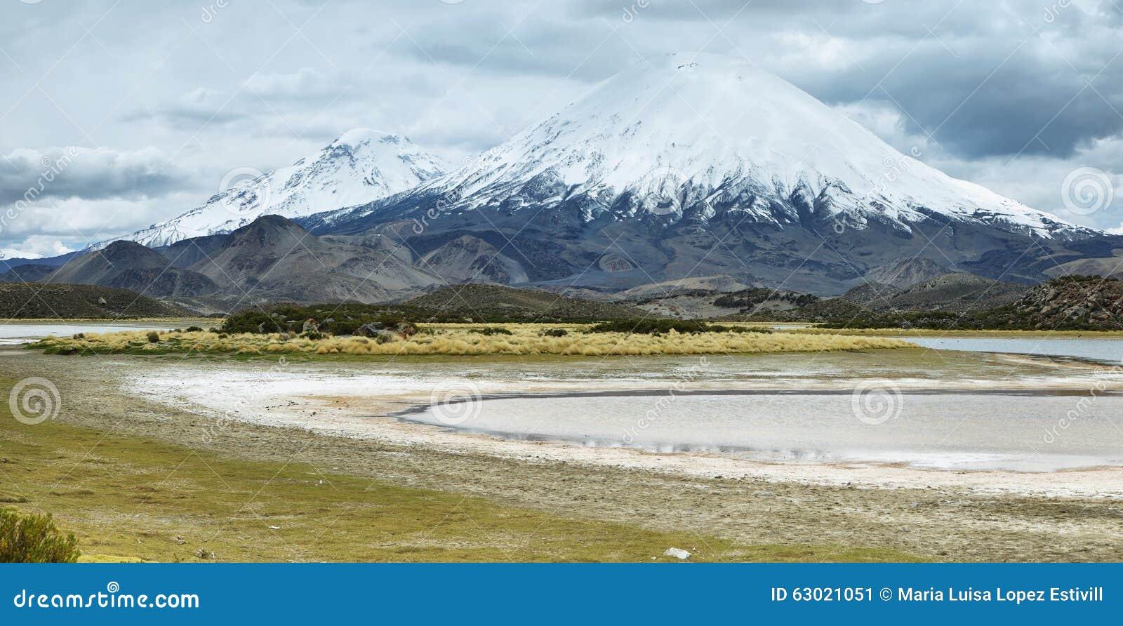 Śnieg nakrywający Parinacota wulkan