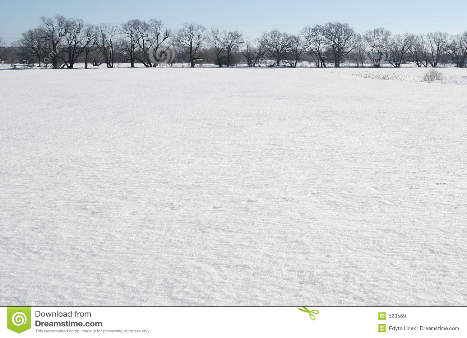 śnieg pola