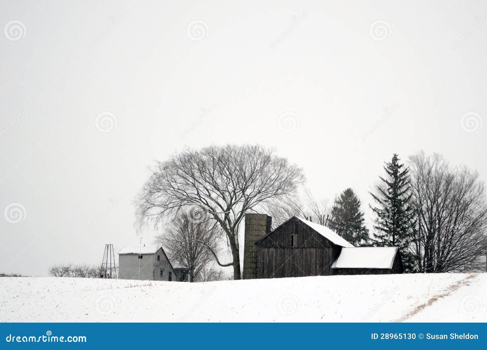Śnieg zakrywający gospodarstwo rolne