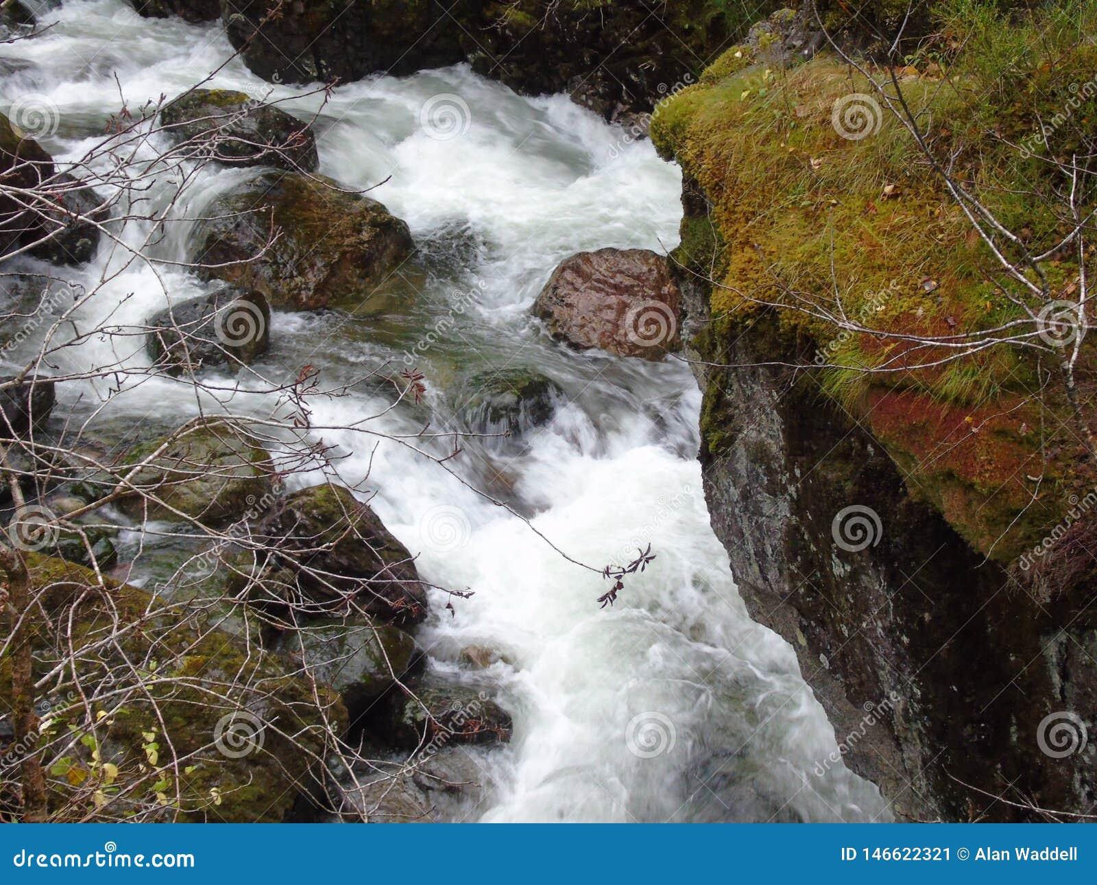 Śpieszyć się wody Rzeczny Coe