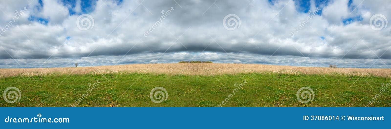 Download Śródpolna łąka, Niebo Chmurnieje Panorama Panoramicznego Sztandar Zdjęcie Stock - Obraz złożonej z szczegółowy, łąka: 37086014