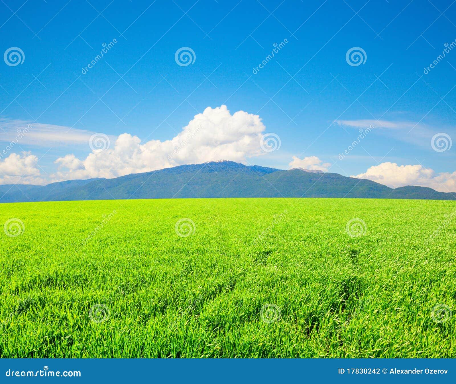 śródpolne zielone wysokie góry