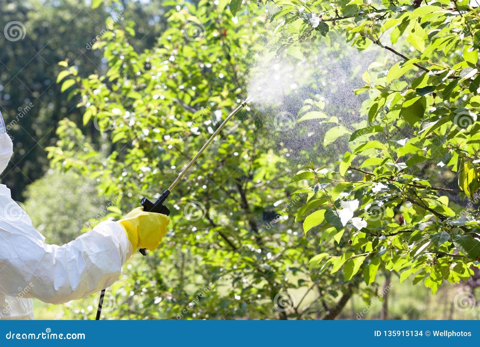 Średniorolnego opryskiwania toksyczni pestycydy lub flit w sadzie