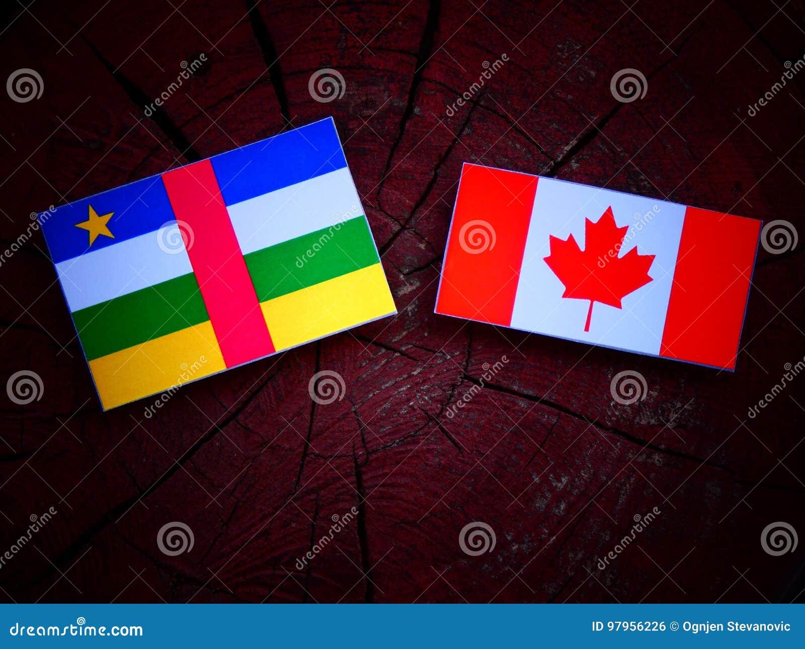 Środkowo-afrykański republiki flaga z kanadyjczyk flaga na drzewnym fiszorku odizolowywającym