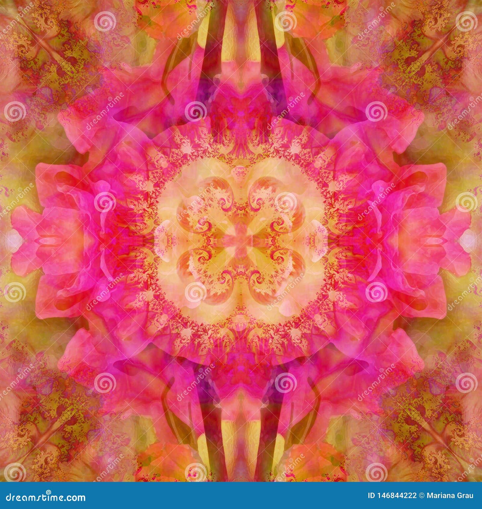ŚRODKOWY kwiatu mandala Z ABSTRAKCJONISTYCZNYMI płatkami W menchiach, FRACTAL wizerunek W centrum Rocznika wizerunek