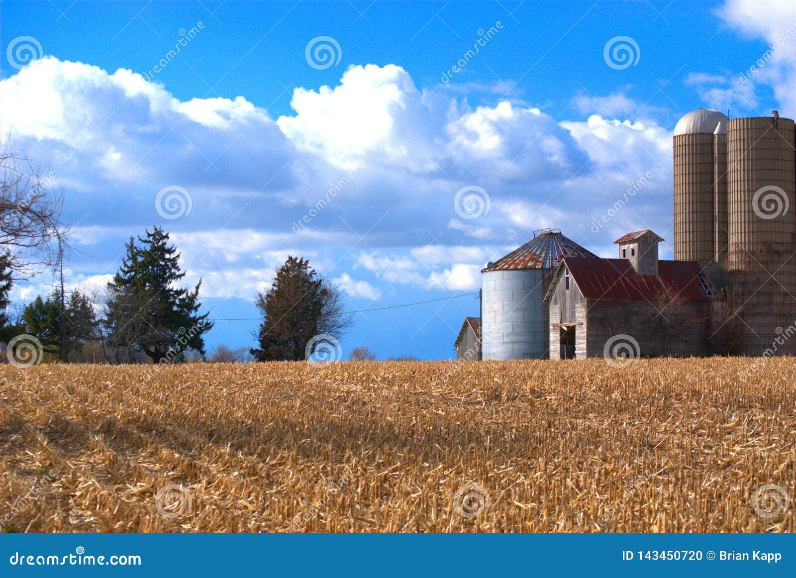 Środkowy Zachód usa Farmscape