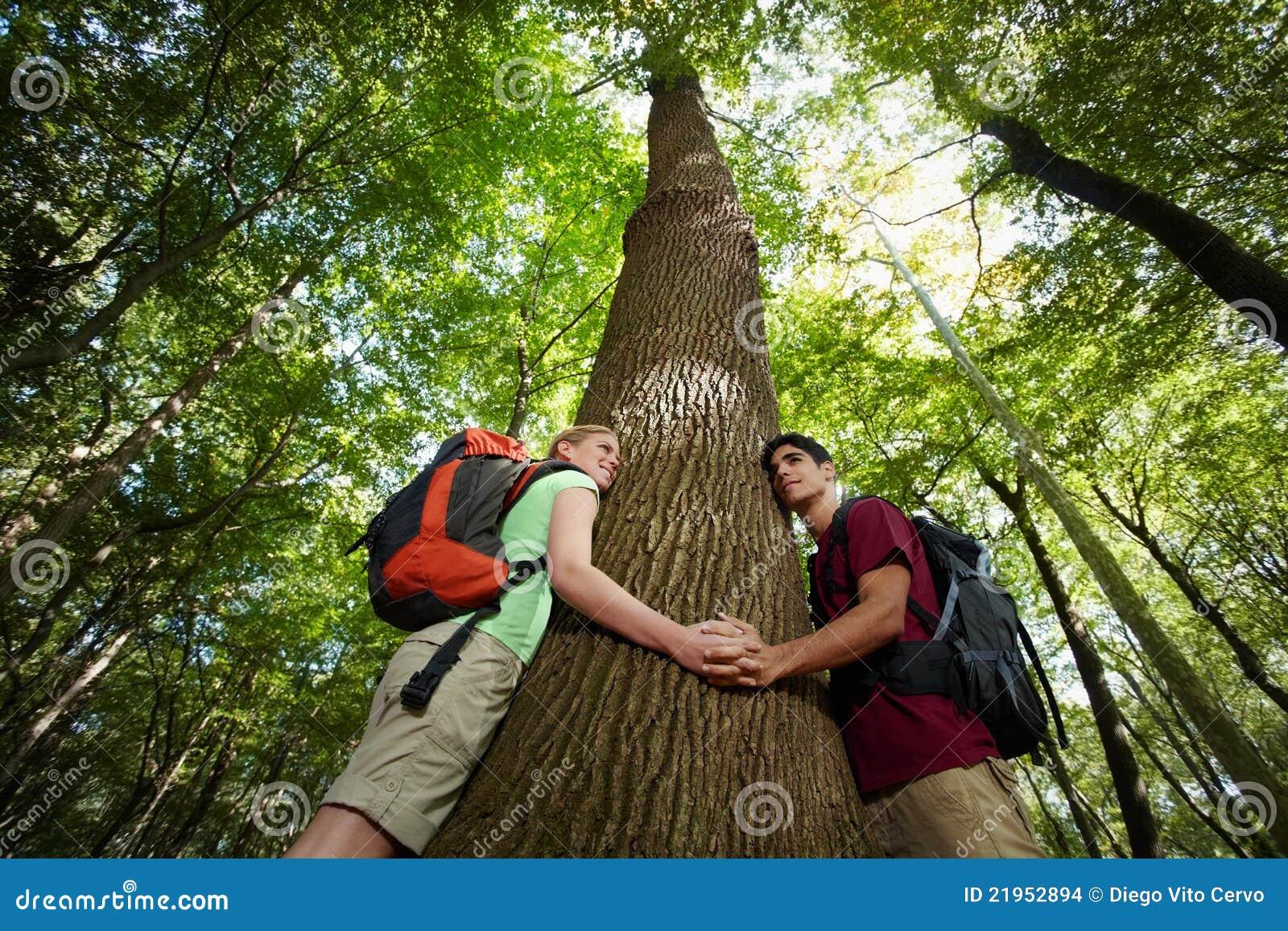 Środowiskowa konserwacja: wycieczkowicze target206_1_ drzewa