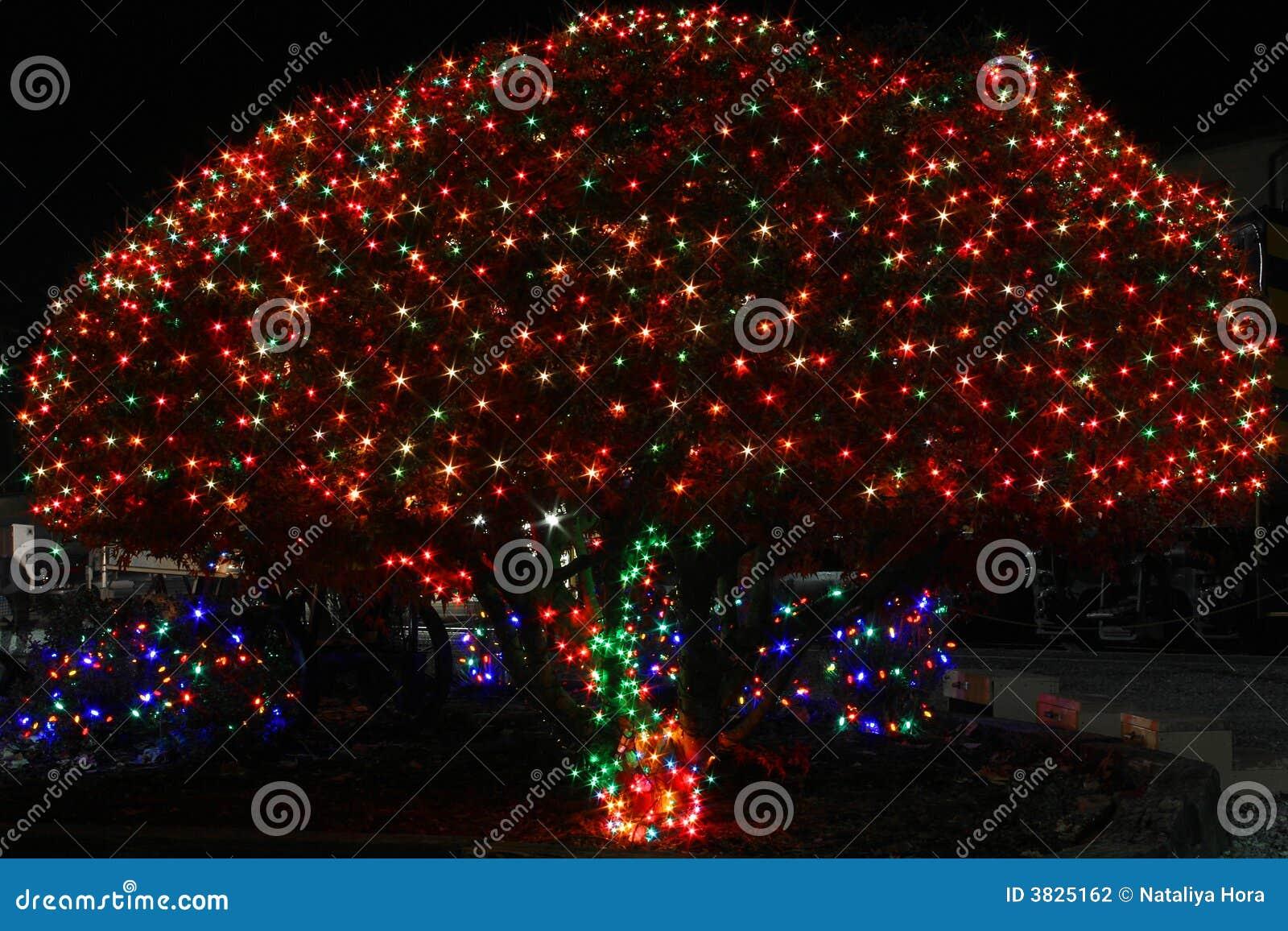 świąteczne lampki tree