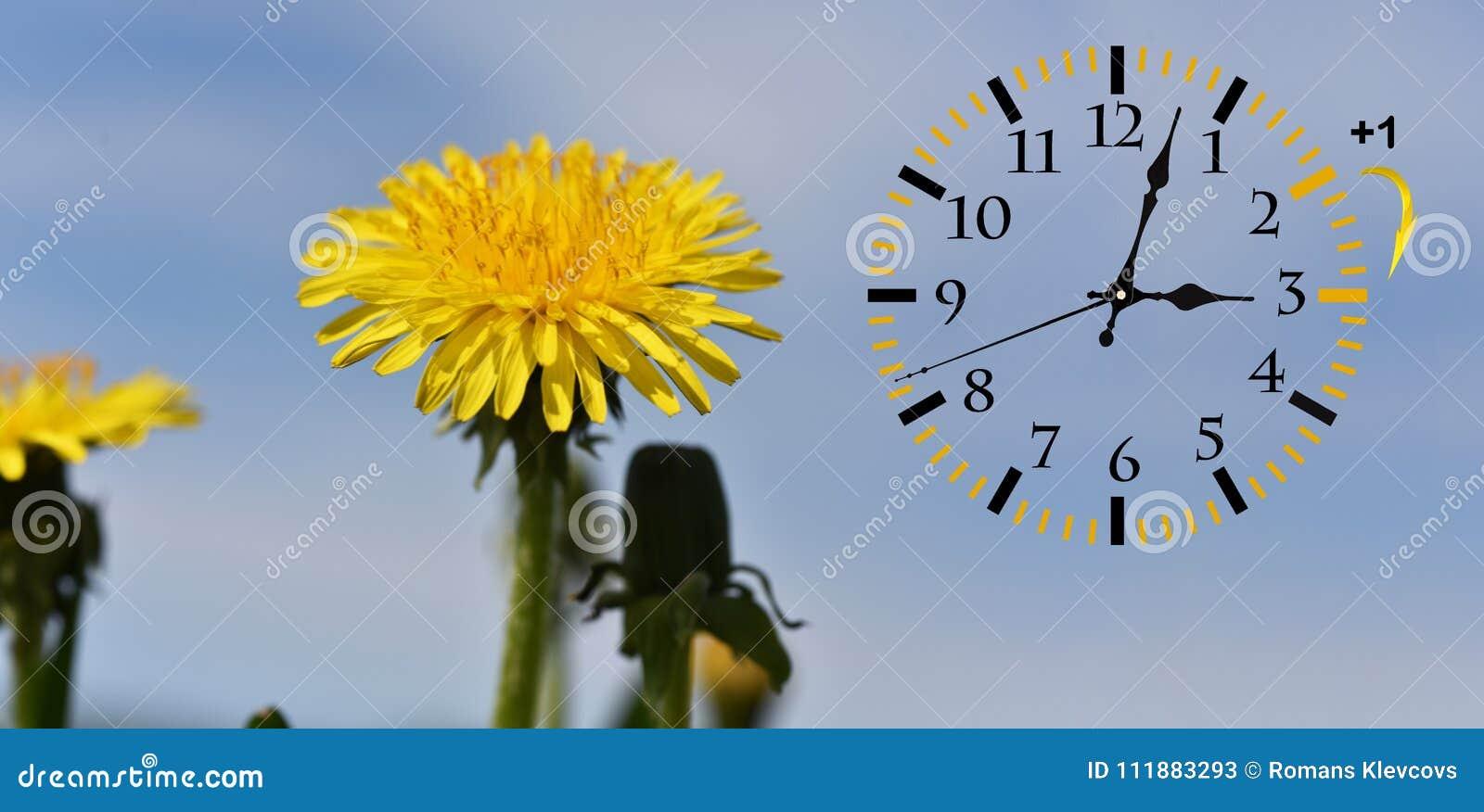 Światła dziennego oszczędzania czas DST Ścienny zegar iść zima czas