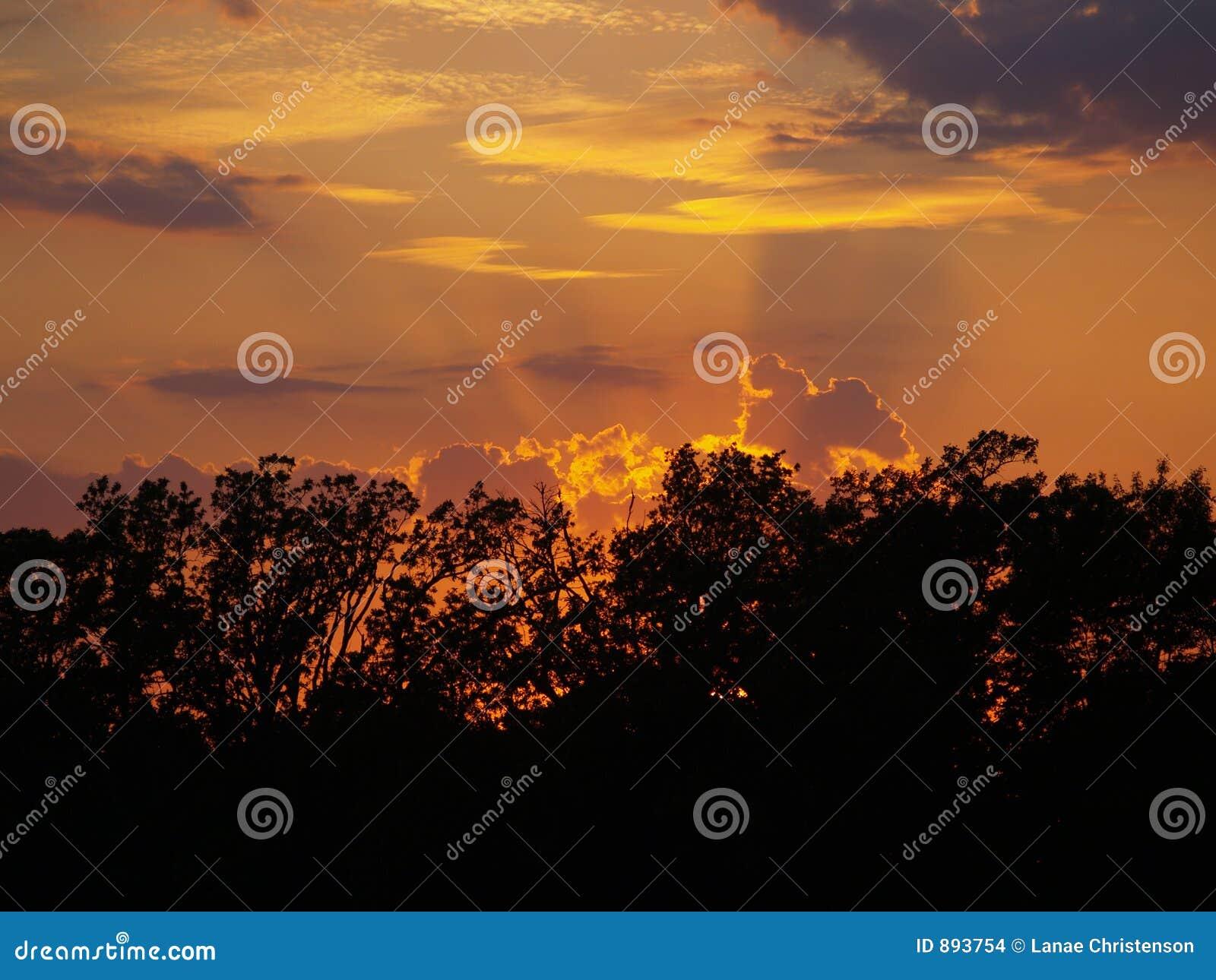 światła słońca