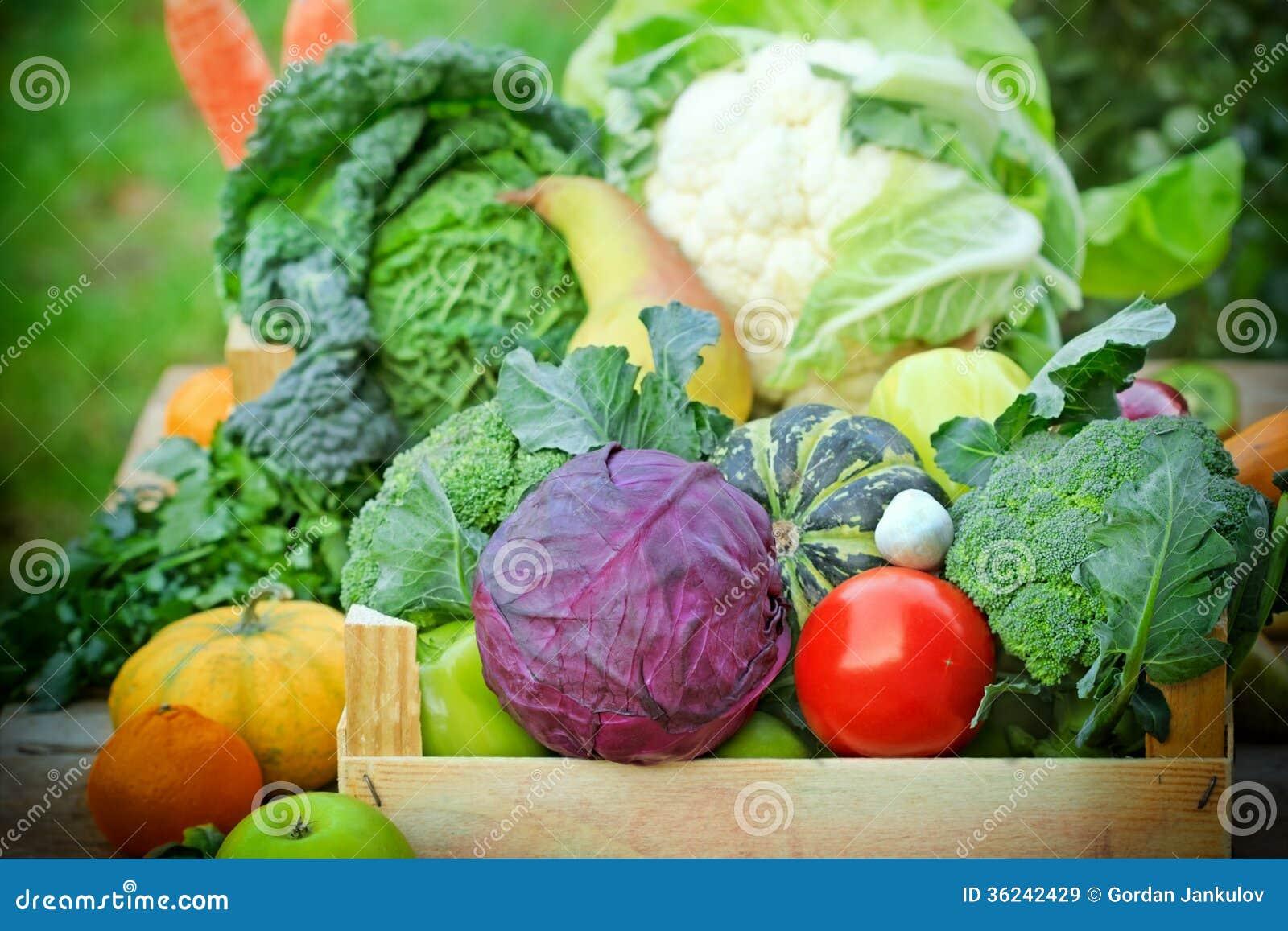 Świeża żywność organiczna