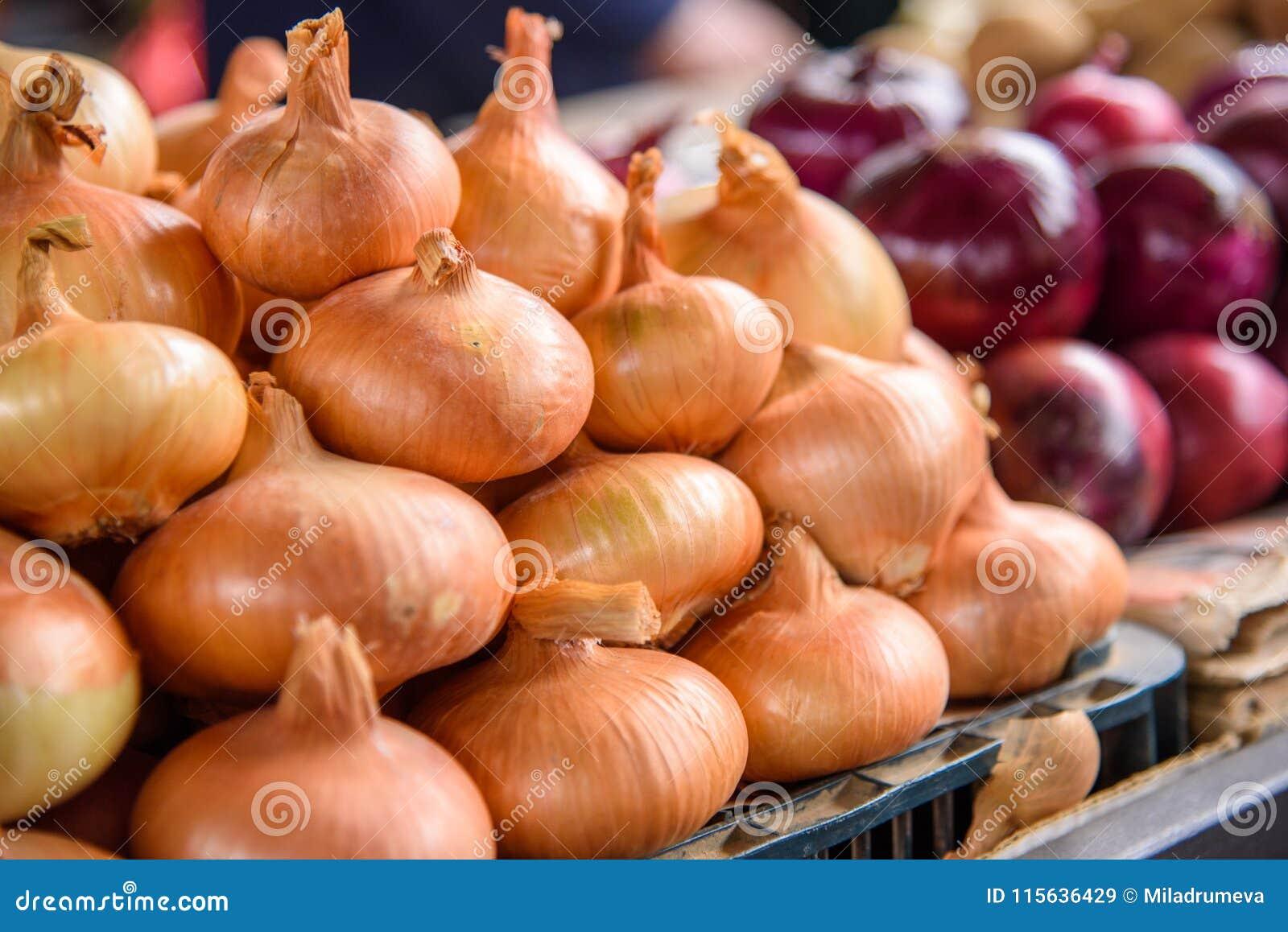 Świeża cebula przy rynkiem
