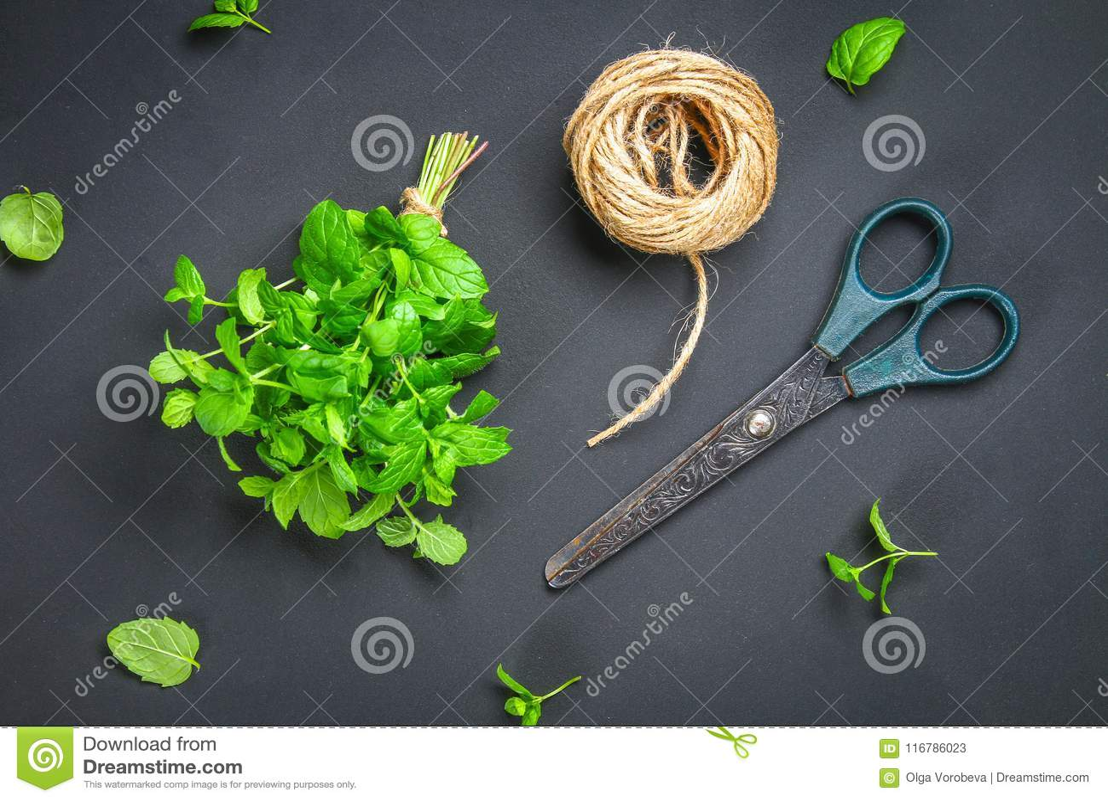 Świeża domowej roboty zielona miętówka z linową dratwą i starymi nożycami na szarym zmroku betonu stole Odgórny widok