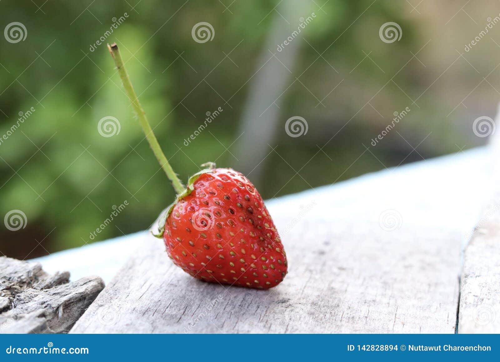 Świeża wyśmienicie organicznie truskawka