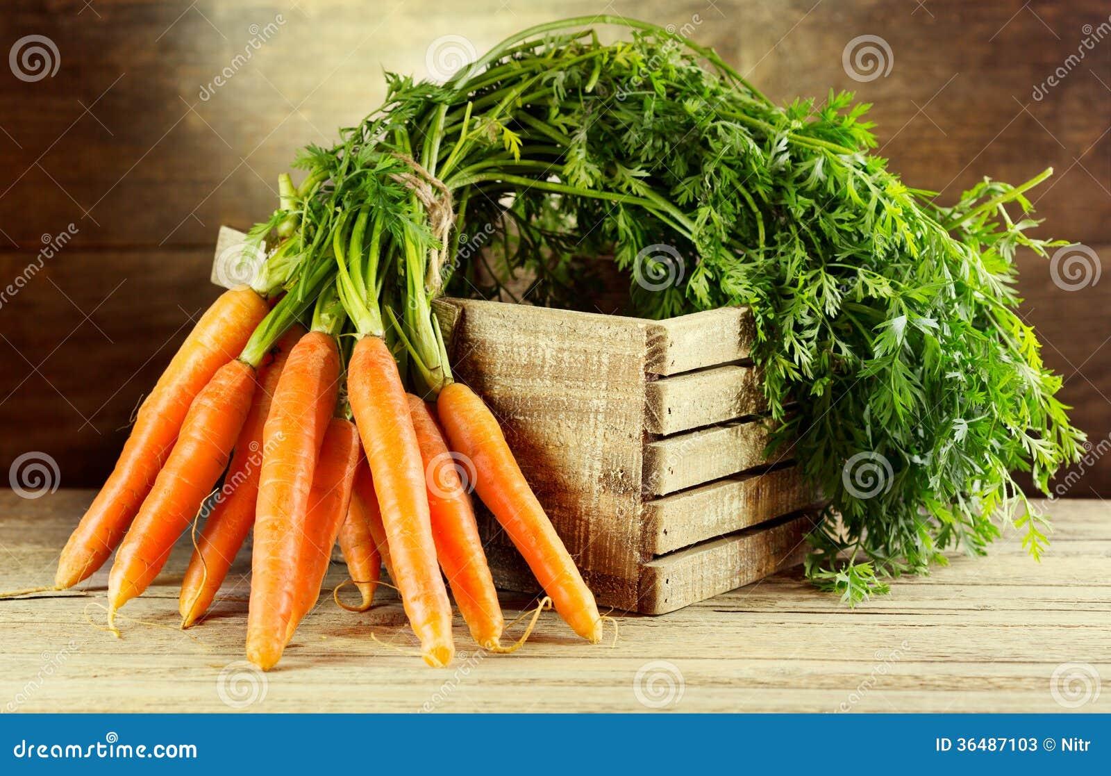 Świeże marchewki