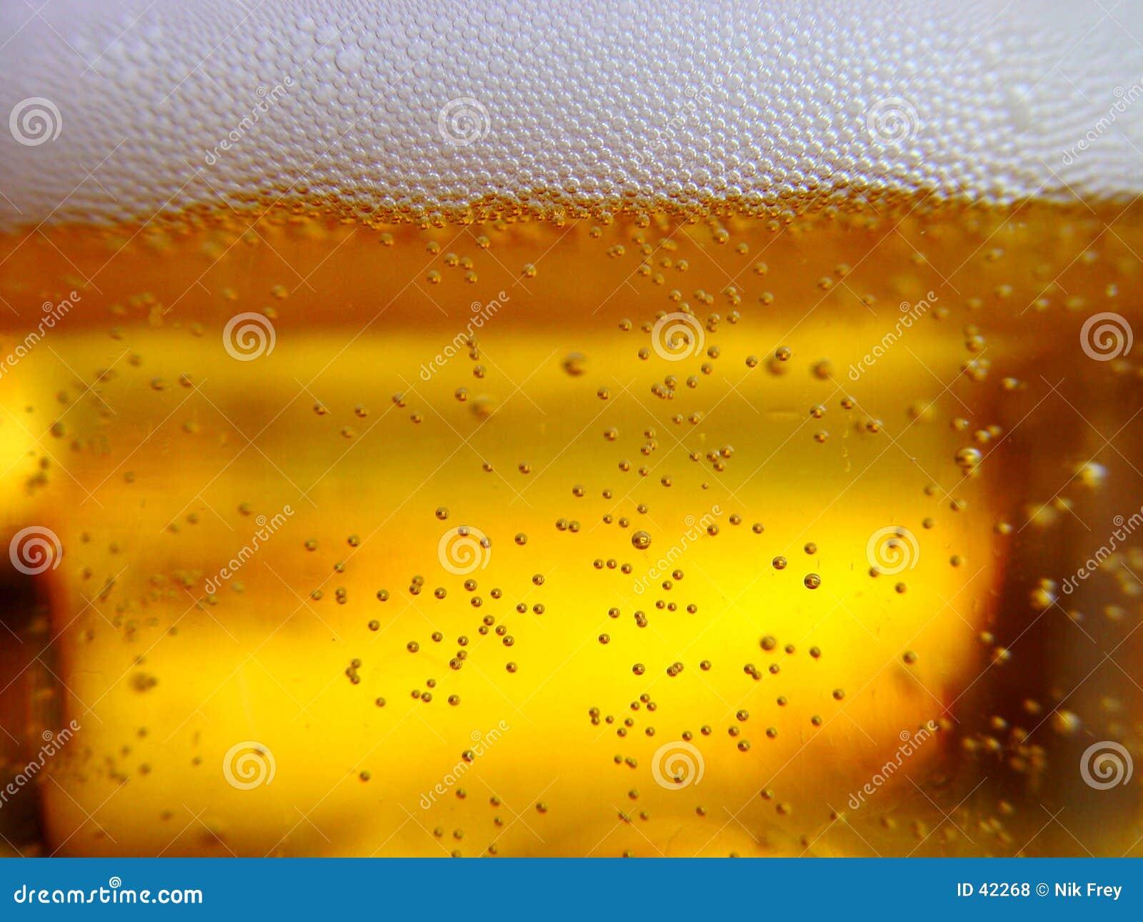 świeżego piwa.
