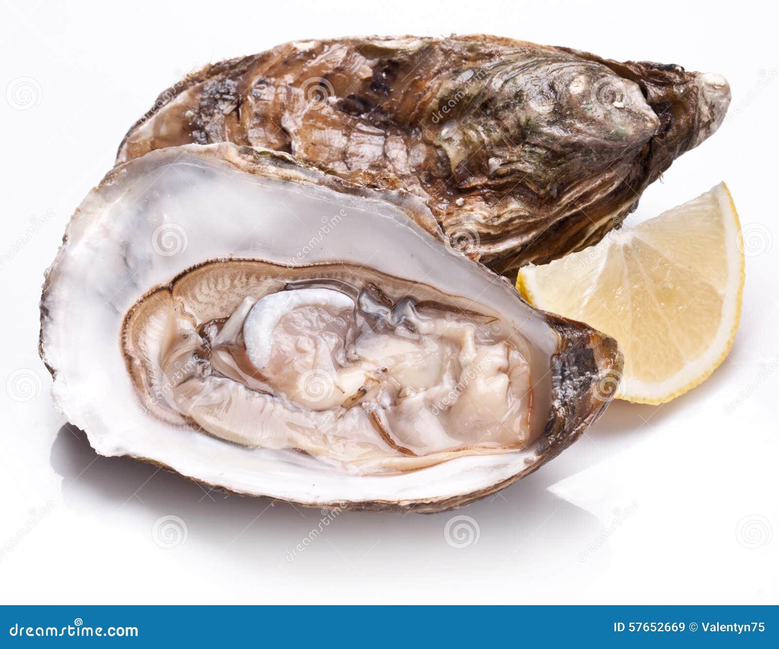 Świeży rozpieczętowany ostrygi i cytryny plasterek