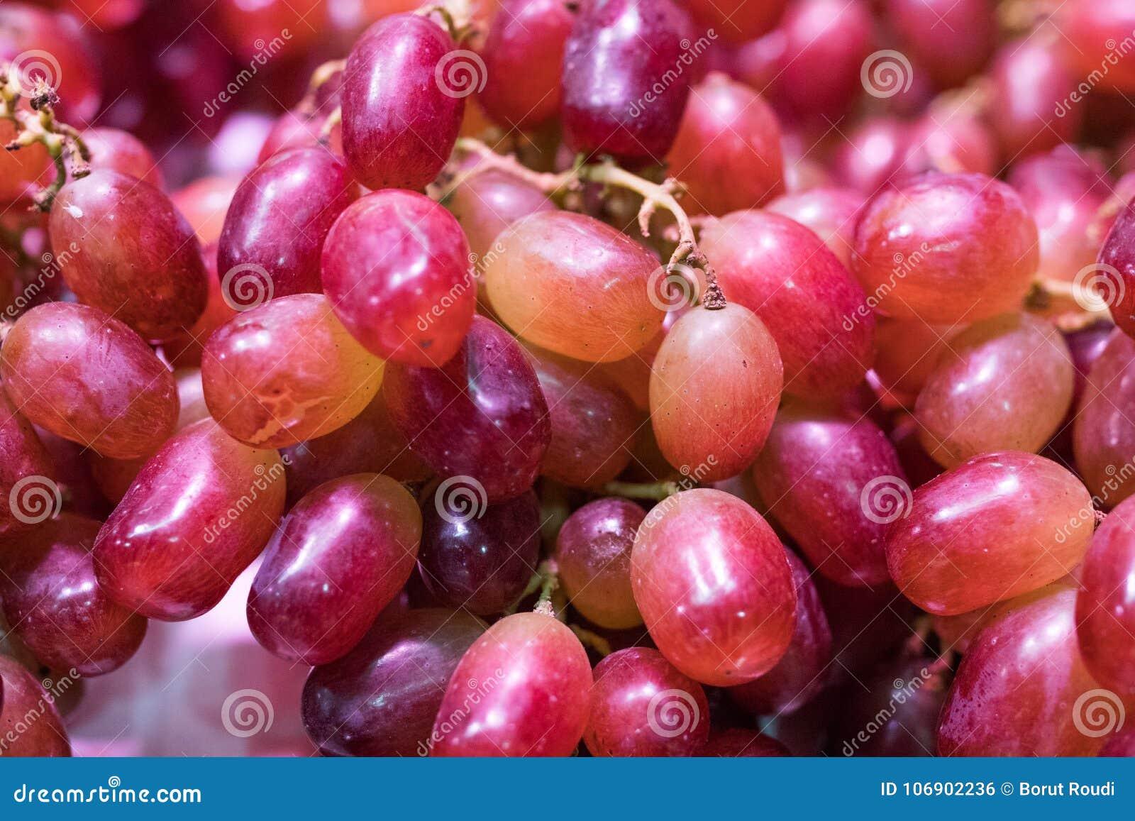 świeży zamknięci świezi winogrona