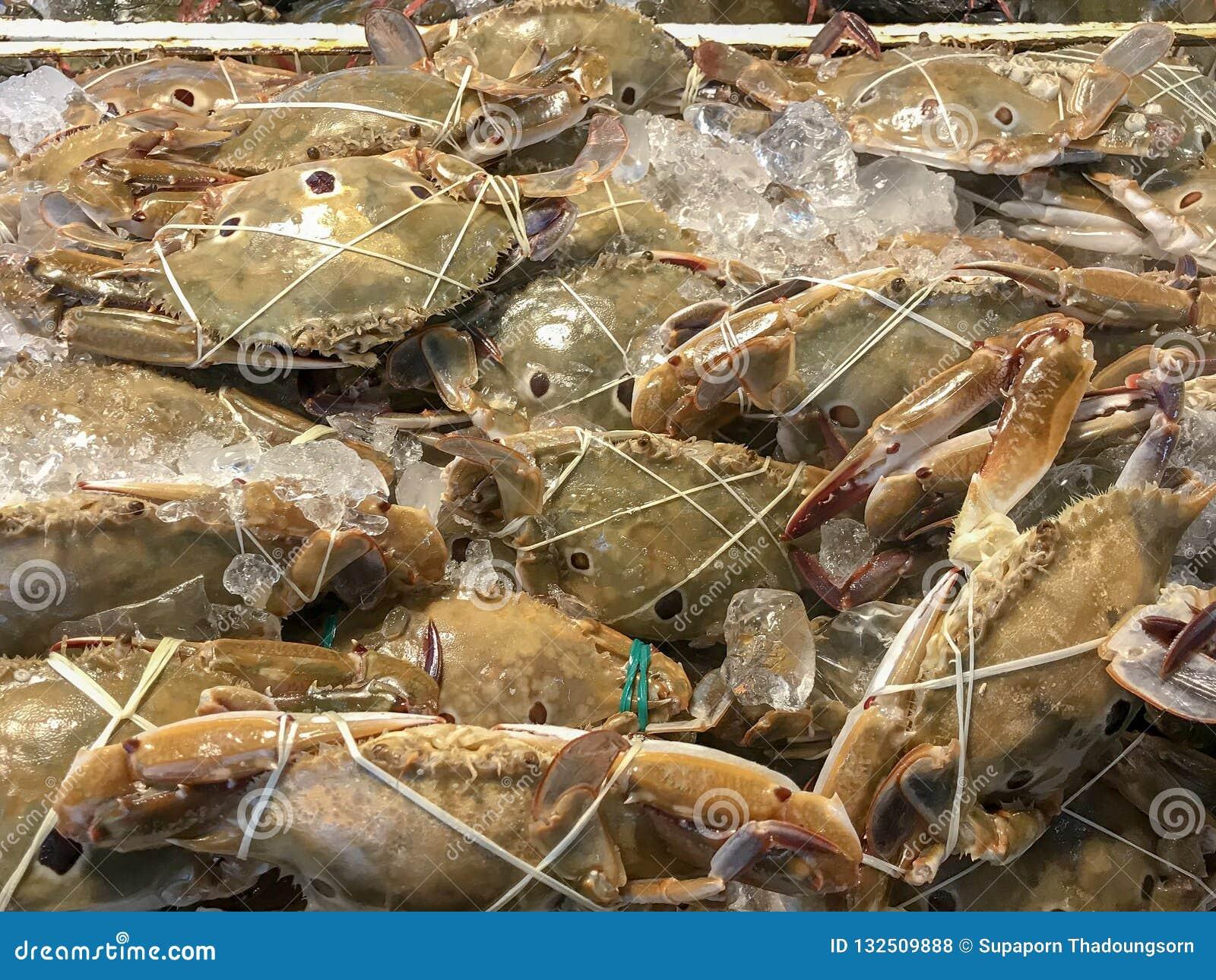 świeżych krabów