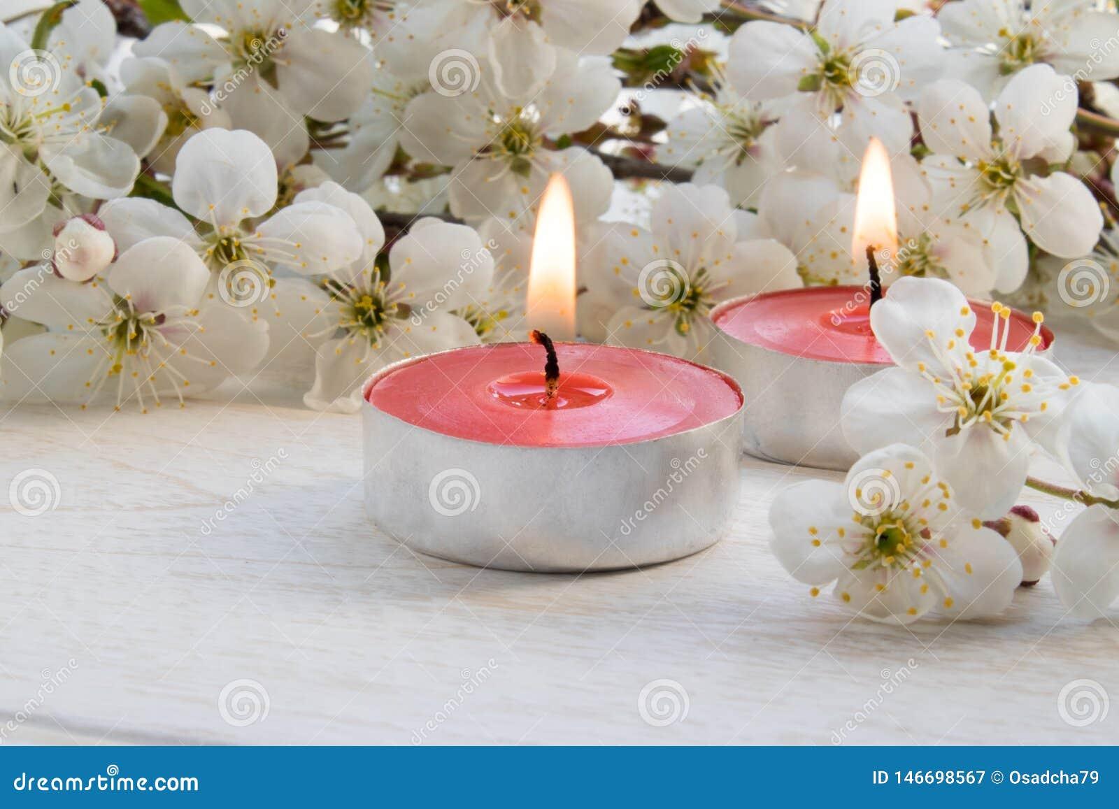 Świeczki stojaki na drewnianym bielu stole blisko gałąź biali kwiaty wiśnia