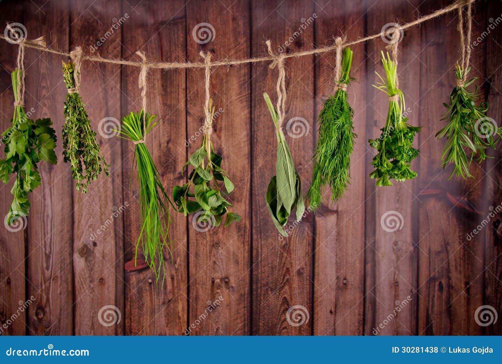 Świezi ziele