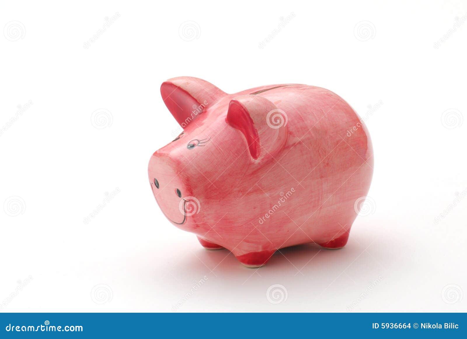 świnka banku