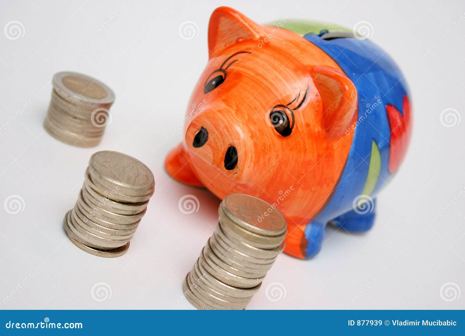 świnka monety