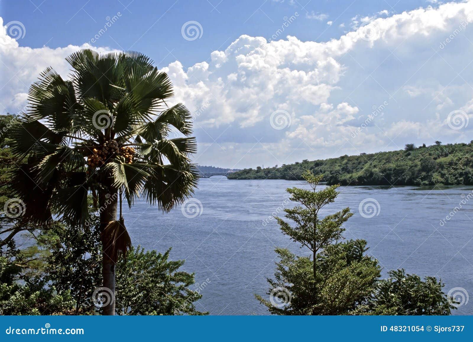 Źródło Biała Nil rzeka w Uganda