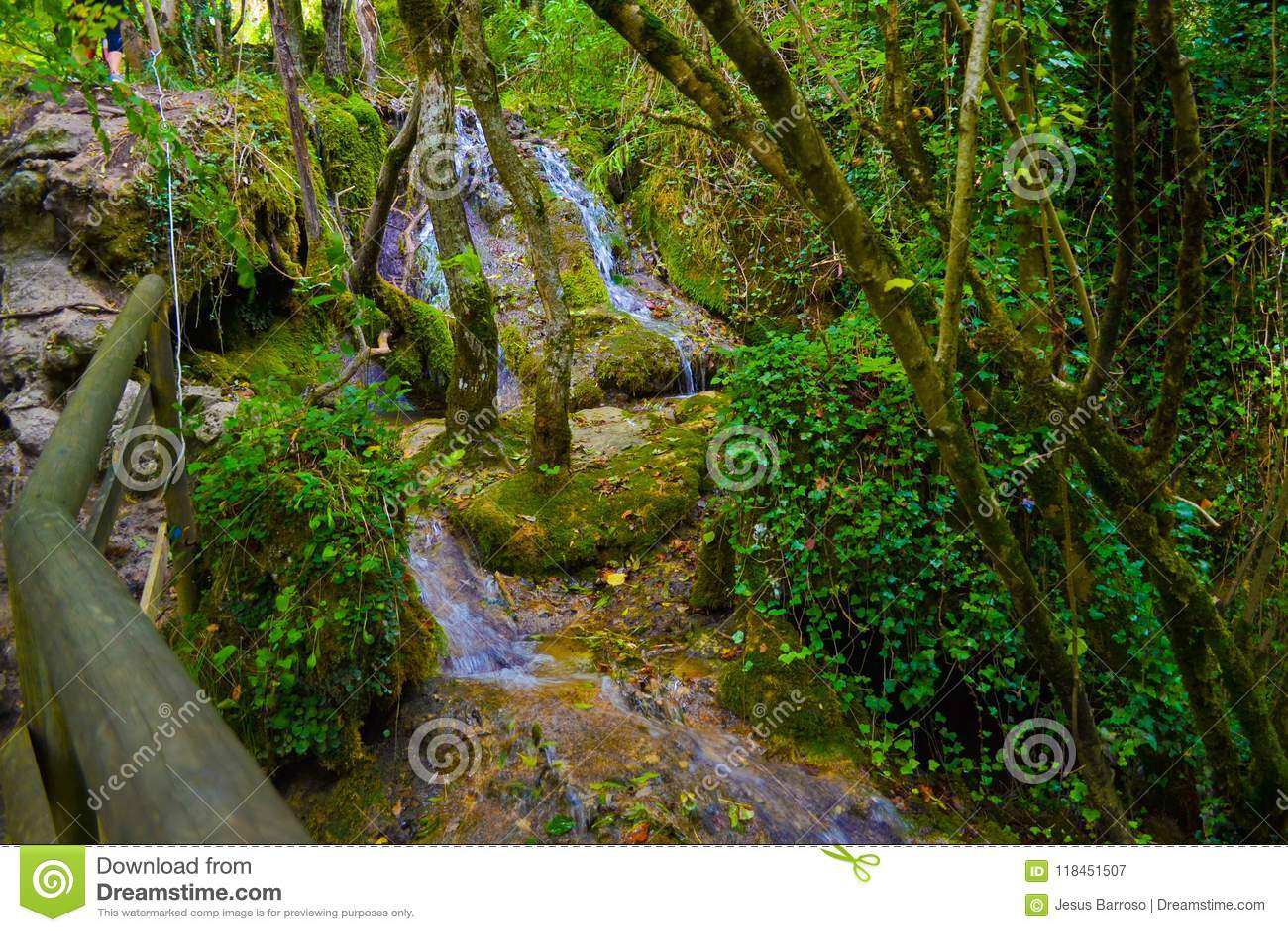 Źródło Urederra lub trasa siklawy Baqueda