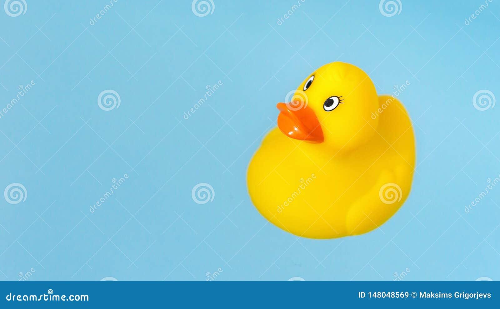 Żółta gumy skąpania kaczka w błękitne wody