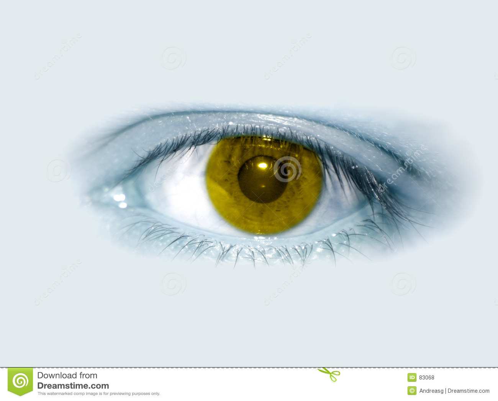 Żółty oko