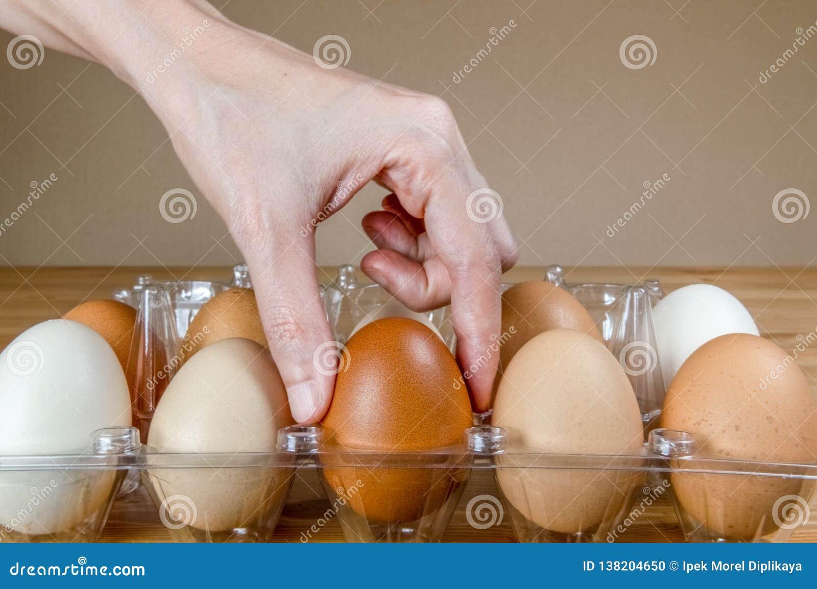 Żeńska ręka podnosi jeden jajko od plastikowego jajecznego pudełka na stole