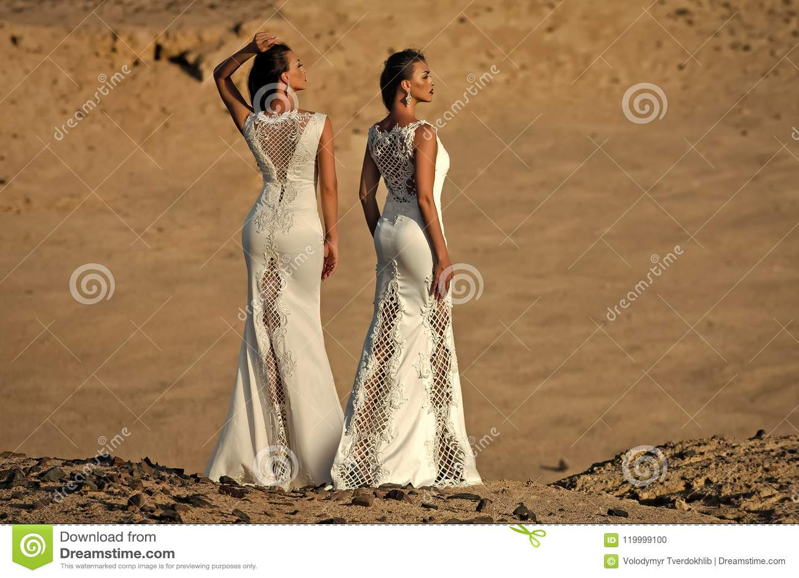 Żeński mody pojęcie Dwa kobiety w białych sukniach, tylny widok, pozuje w pustyni