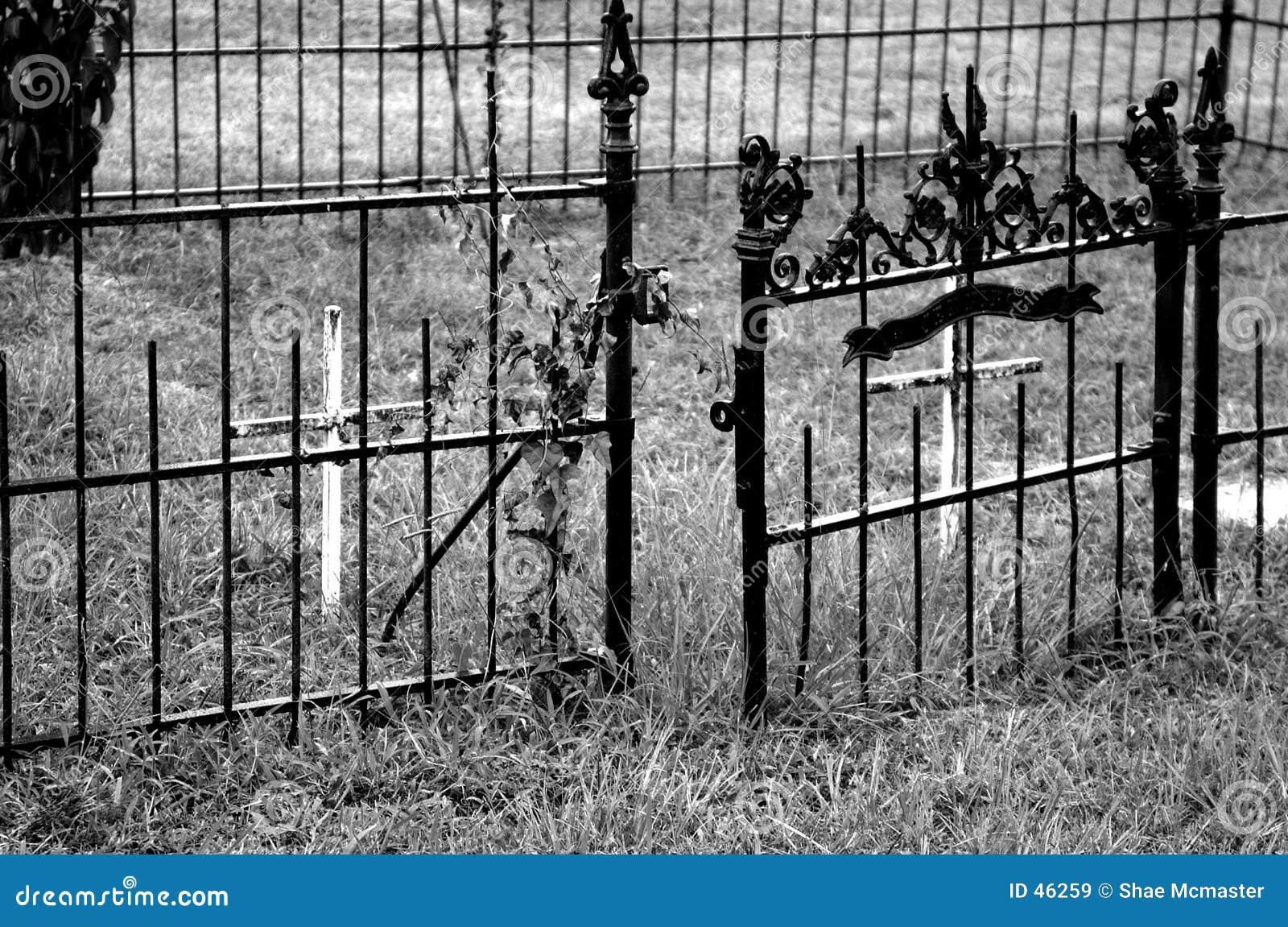 żelazo bramy