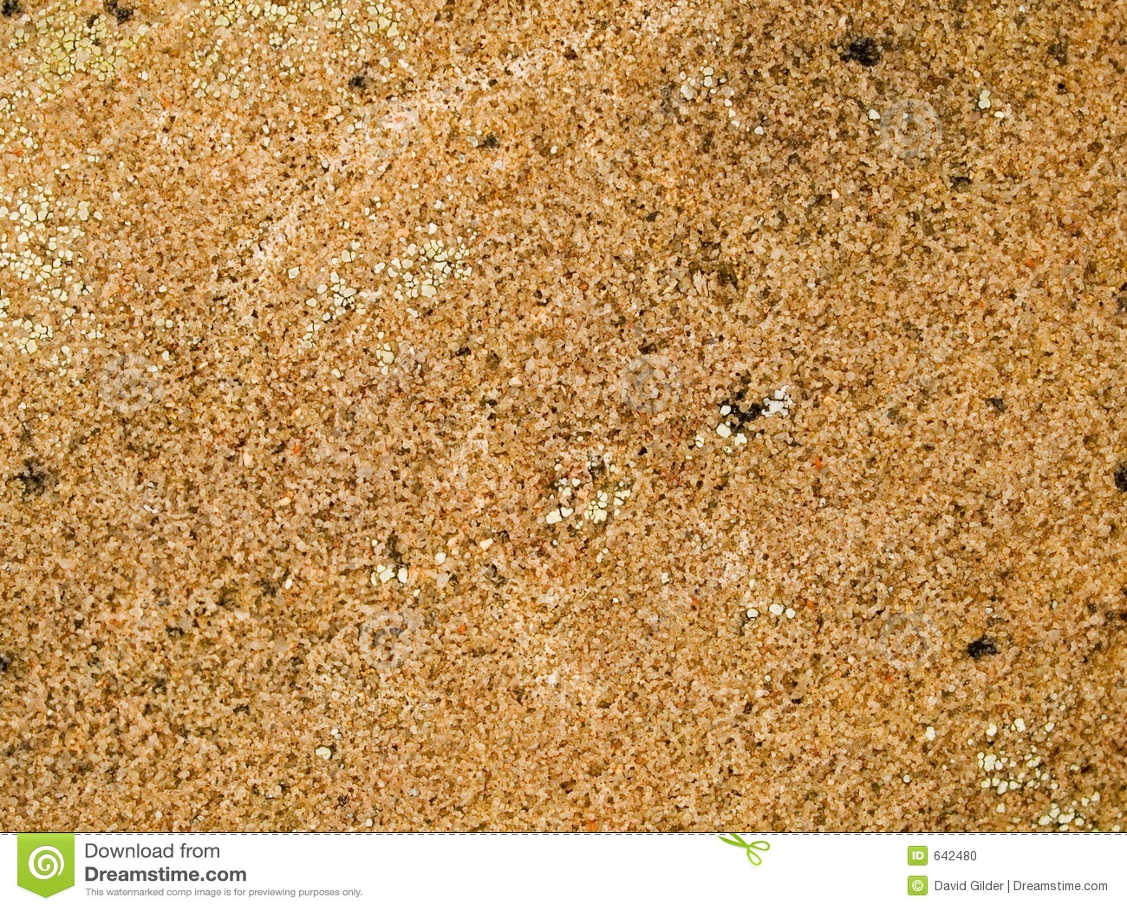 Żyłkowana makro- tekstura - kamień -