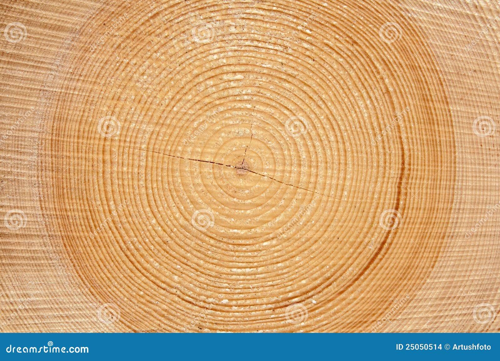 片式木材木头 库存图片