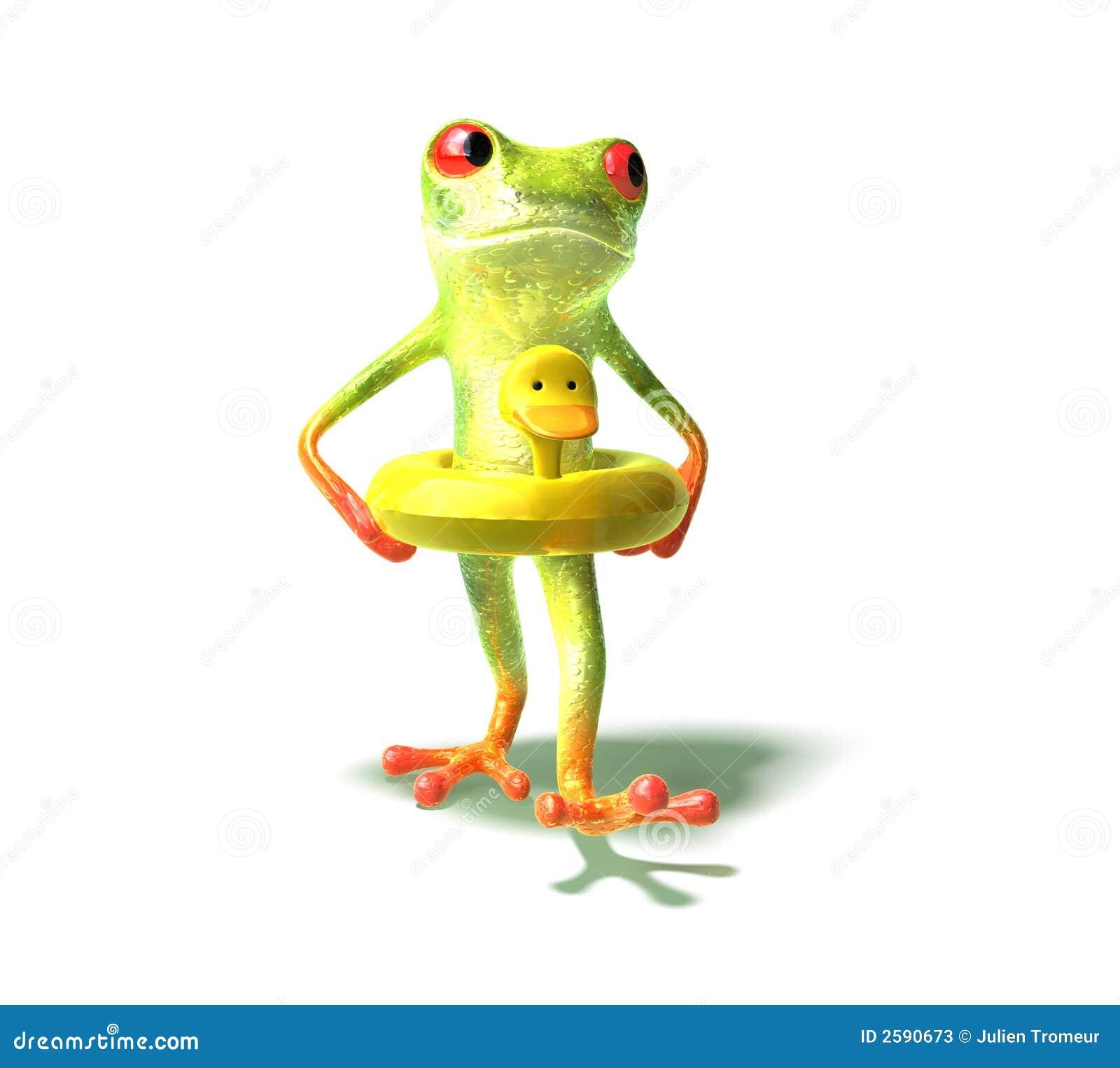 青蛙去的游泳 库存照片