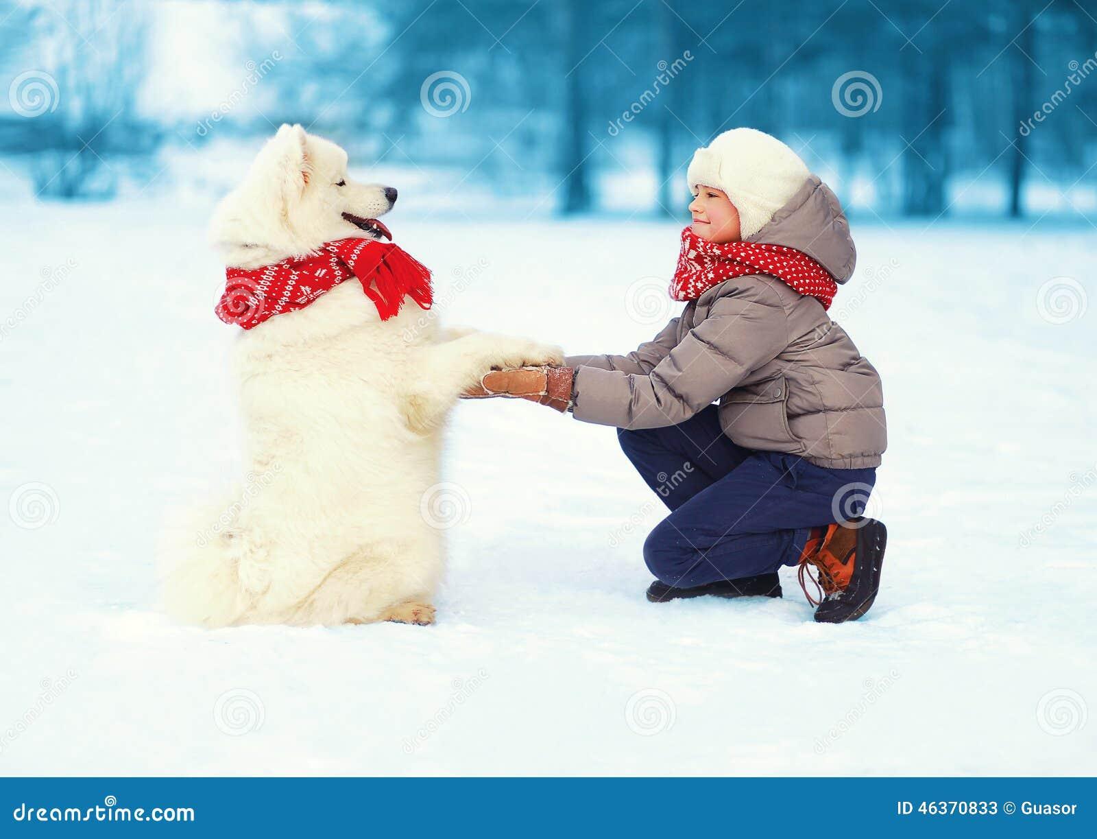 圣诞节,冬天和人概念-使用与白色萨莫耶特人狗的愉快的少年男孩户外在图片