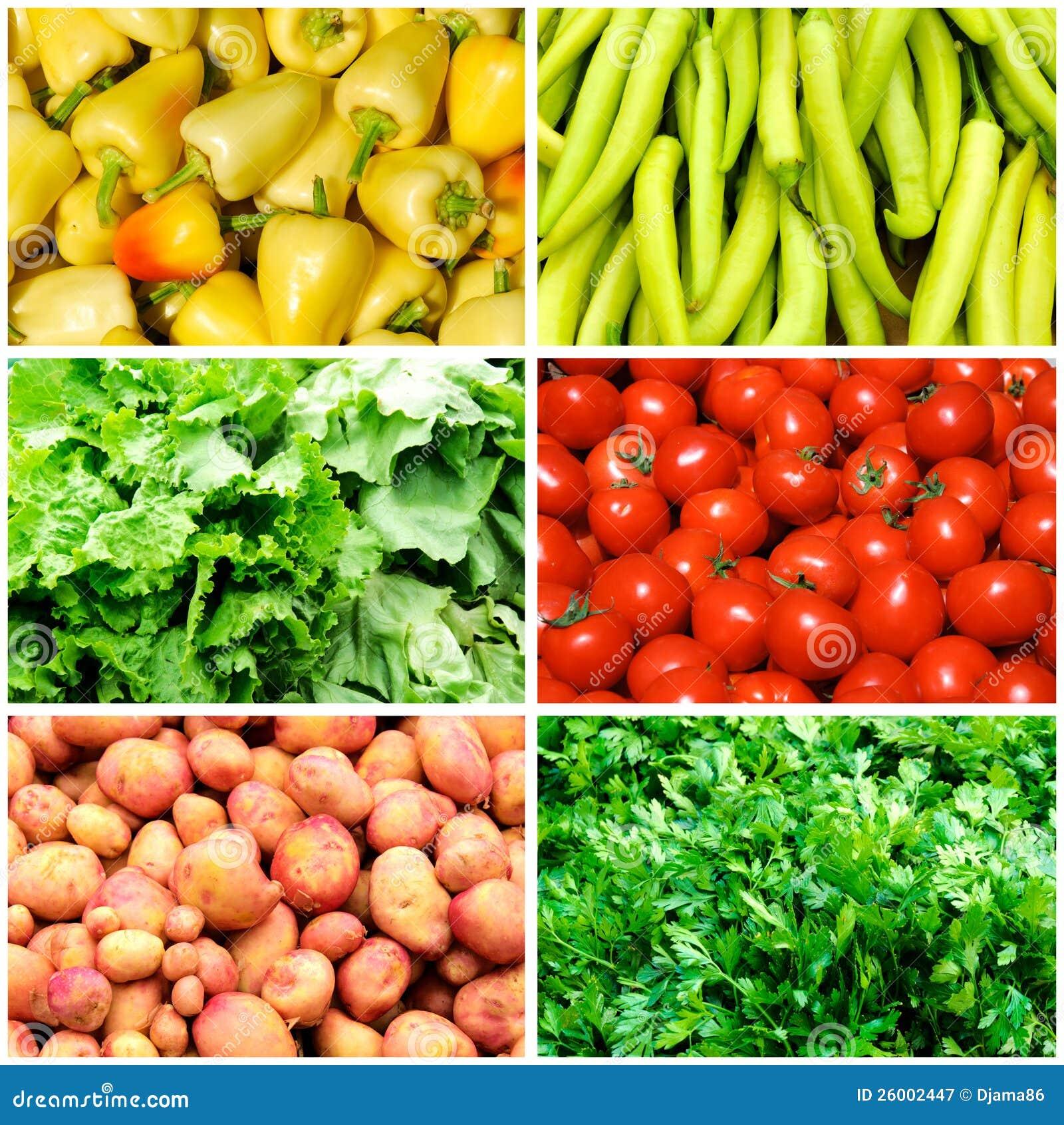 束在拼贴画的蔬菜