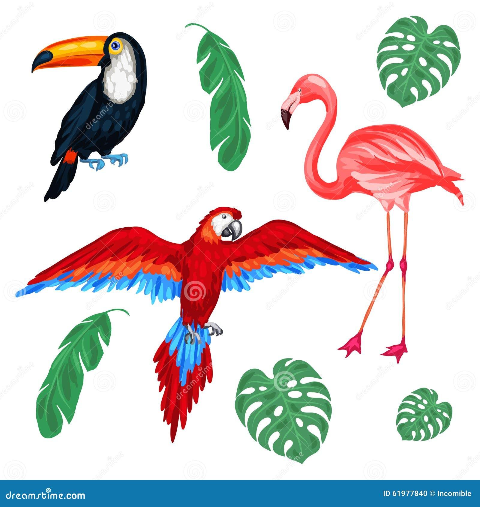 套热带鸟和棕榈叶 向量例证