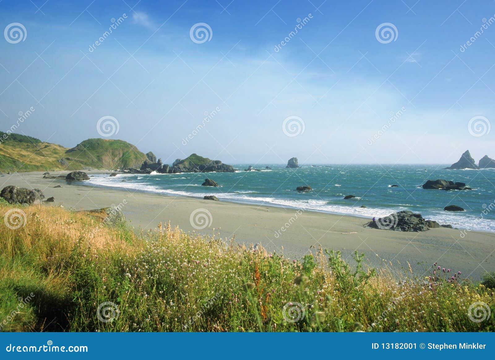 άγονη παραλία Όρεγκον