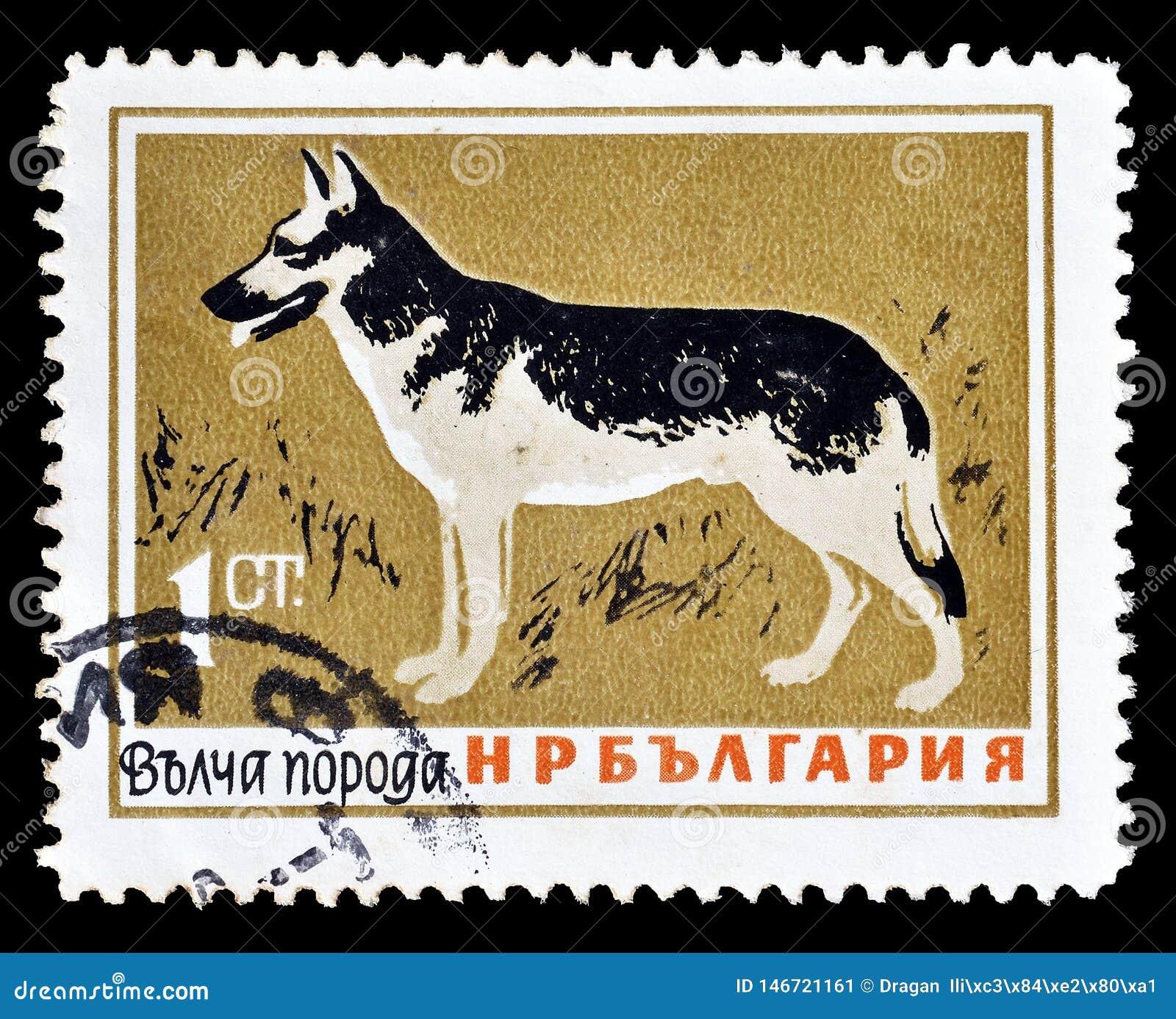 Άγρια ζώα στα γραμματόσημα