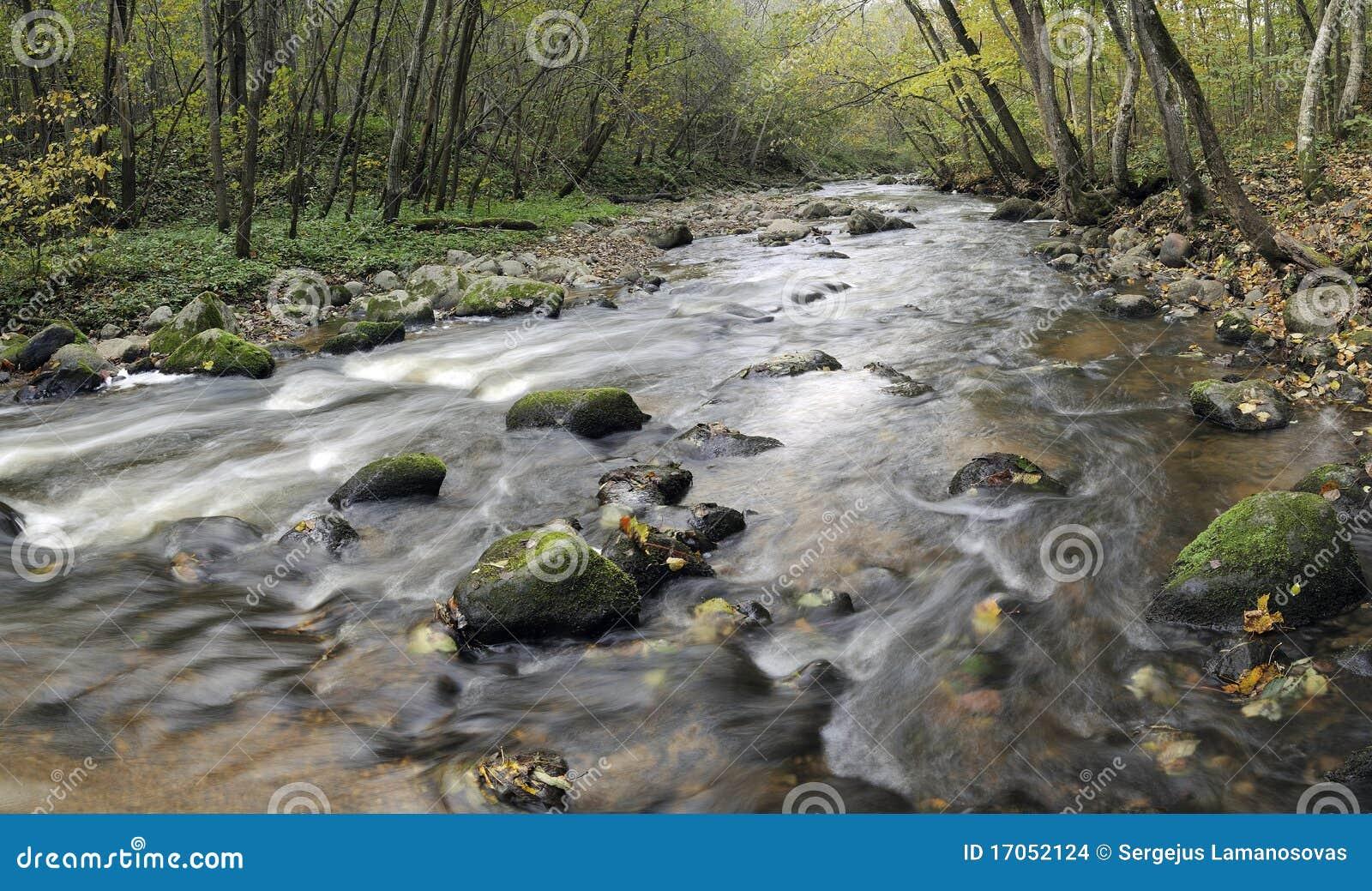 άγρια περιοχές ποταμών παν&omic